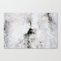 The Right Spot Canvas Print