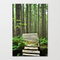 Bike Trail, BC Canvas Print