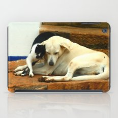 Like cats and dogs iPad Case
