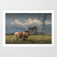 Longhorn Steer In A Prai… Art Print