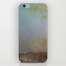 this will clarify iPhone & iPod Skin