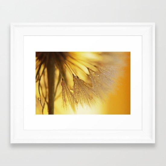 Dandelion Light Framed Art Print