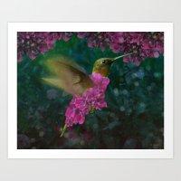 If a hummingbird became a hydrangea Art Print