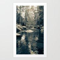 Goldstream Art Print