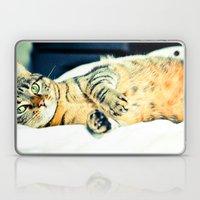 Кошка Laptop & iPad Skin
