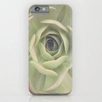 Iceplant  iPhone 6 Slim Case