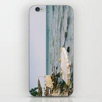 Dalboka Love iPhone & iPod Skin