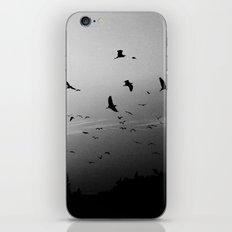 Migrating birds #02 iPhone & iPod Skin