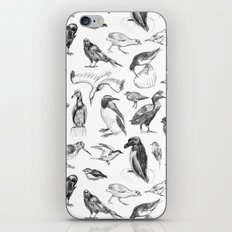 Manx Fauna - (British) Birds iPhone & iPod Skin