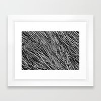 Bed of Reeds Framed Art Print