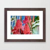 Red Ginger Framed Art Print