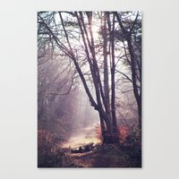 Wanderings Canvas Print