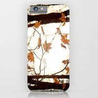 Sunlight Through the Branches iPhone 6 Slim Case