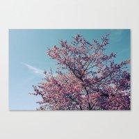 Blossom Into Spring Canvas Print