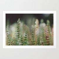 Botanical no. 2 Art Print