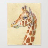 Giraffe #2 Canvas Print