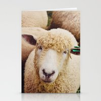 Cotswold Sheep Stationery Cards