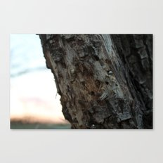Metal and Wood Canvas Print
