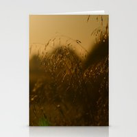 Delicate Grasses And Dew Stationery Cards