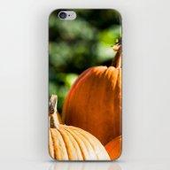 Autumn Vegetable iPhone & iPod Skin