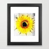 Sunflower from Water Framed Art Print