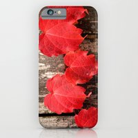 iPhone & iPod Case featuring Red Ivy by Shy Photog