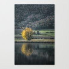 Water Mirror Canvas Print
