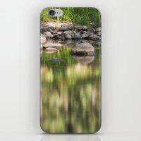 Merced River iPhone & iPod Skin