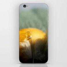 Yellow Feather Drop iPhone & iPod Skin