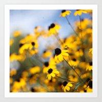 Bright Yellows Art Print