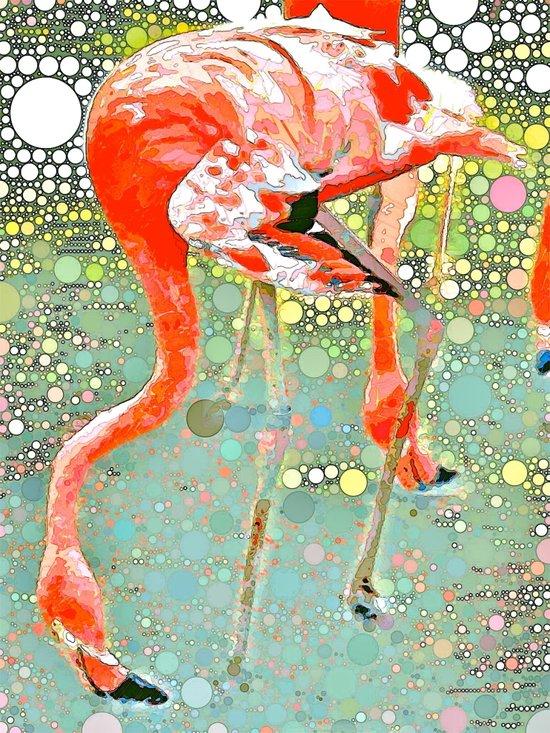 Flamingo Drinking Art Print