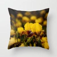 Yellow And Maroon Irisis Throw Pillow