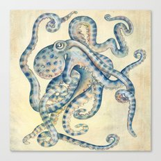 Blue Octopus Canvas Print