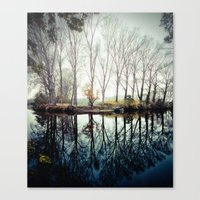 A bend in the river Canvas Print