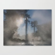 Palm trees in the fog Canvas Print