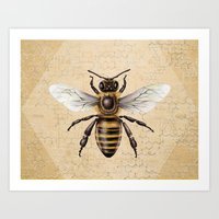 bee Art Prints featuring Bee by Paper Skull Studios
