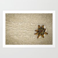 Starfish on the Move Art Print
