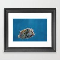 Yellow Boxfish Framed Art Print