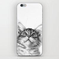 Kitten looking up G115 iPhone & iPod Skin