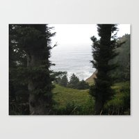 One Last Look Canvas Print