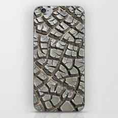 Texture #14 Drought iPhone & iPod Skin
