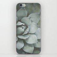 Agave no. 2 iPhone & iPod Skin