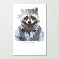 Racoon Canvas Print
