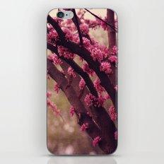 Rosa iPhone & iPod Skin