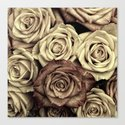 Brown Roses Canvas Print