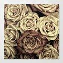 Brown Roses Canvas Print