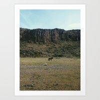 Rock Pasture Pony Art Print