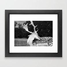 Leave Me Alone... Framed Art Print