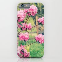 iPhone & iPod Case featuring Pink Azalea Bushes by Shannon Marie
