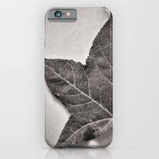 October iPhone 6 Slim Case